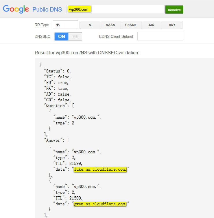 google-dns-resolve